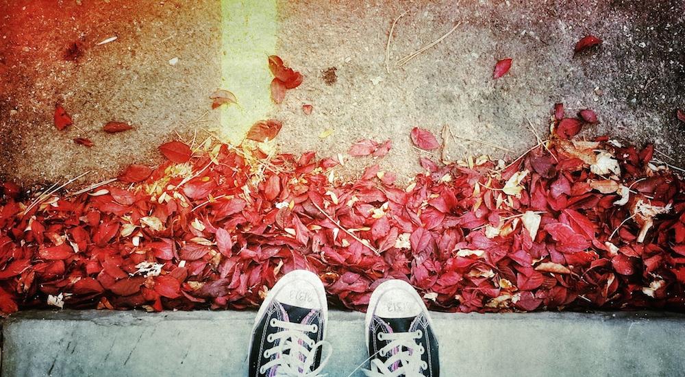Image post 5 planes divertidos y gratis para hacer este otoño