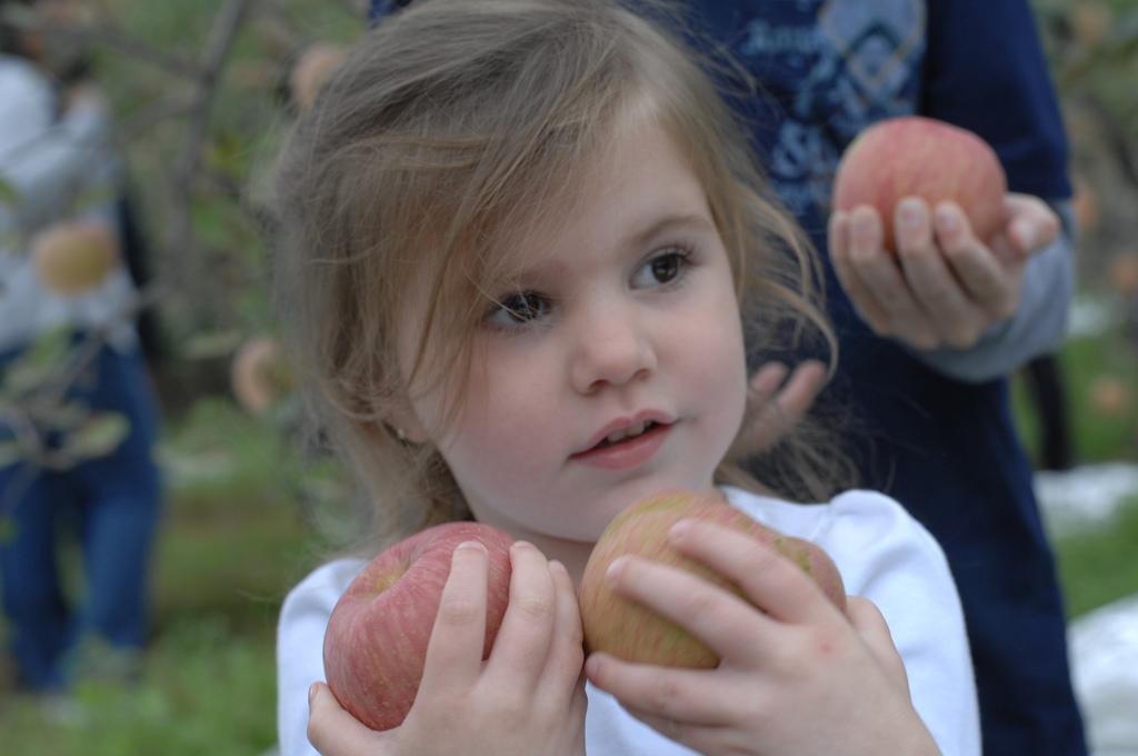 Image post ¿Quieres que tus hijos coman bien? ¡Deja que cocinen!