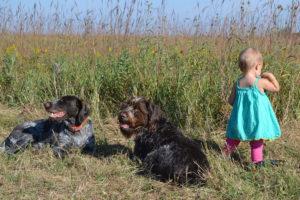 perros-ninos-2