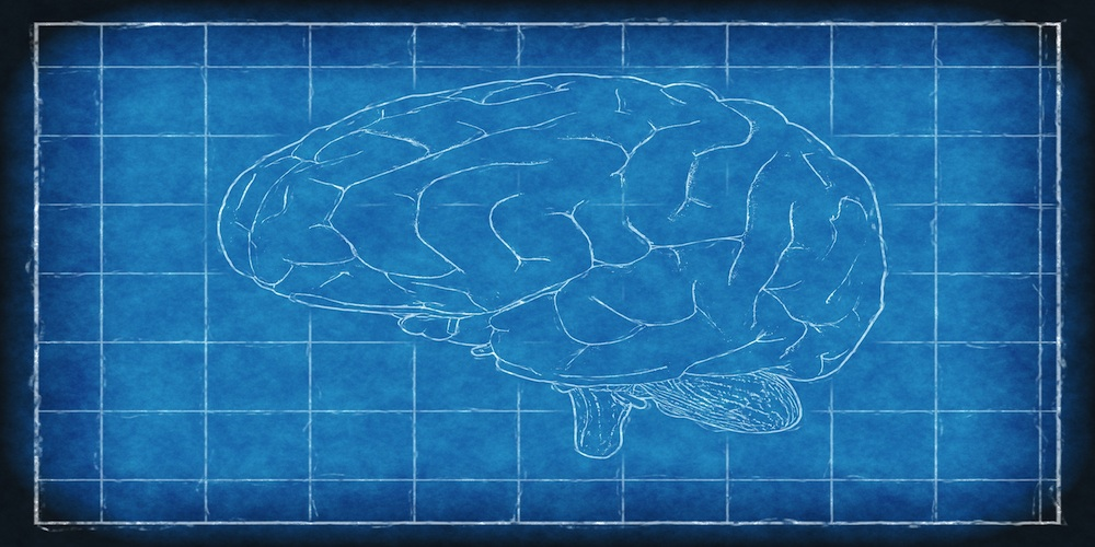 brain-1845941_1920-1