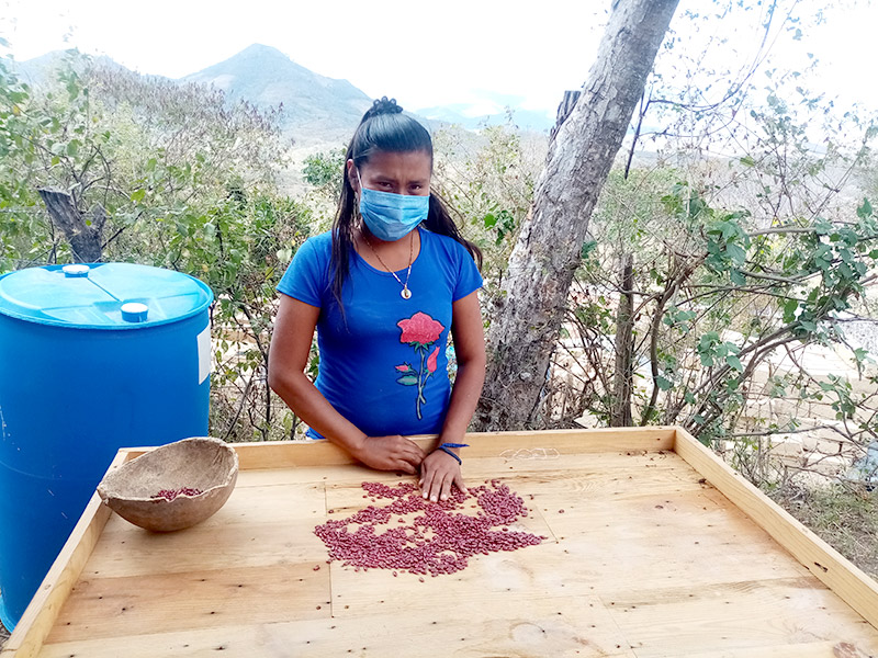 """Foto de la entrada:Rosa: """"Quiero ayudar con mis conocimientos de agricultura a mi comunidad"""""""
