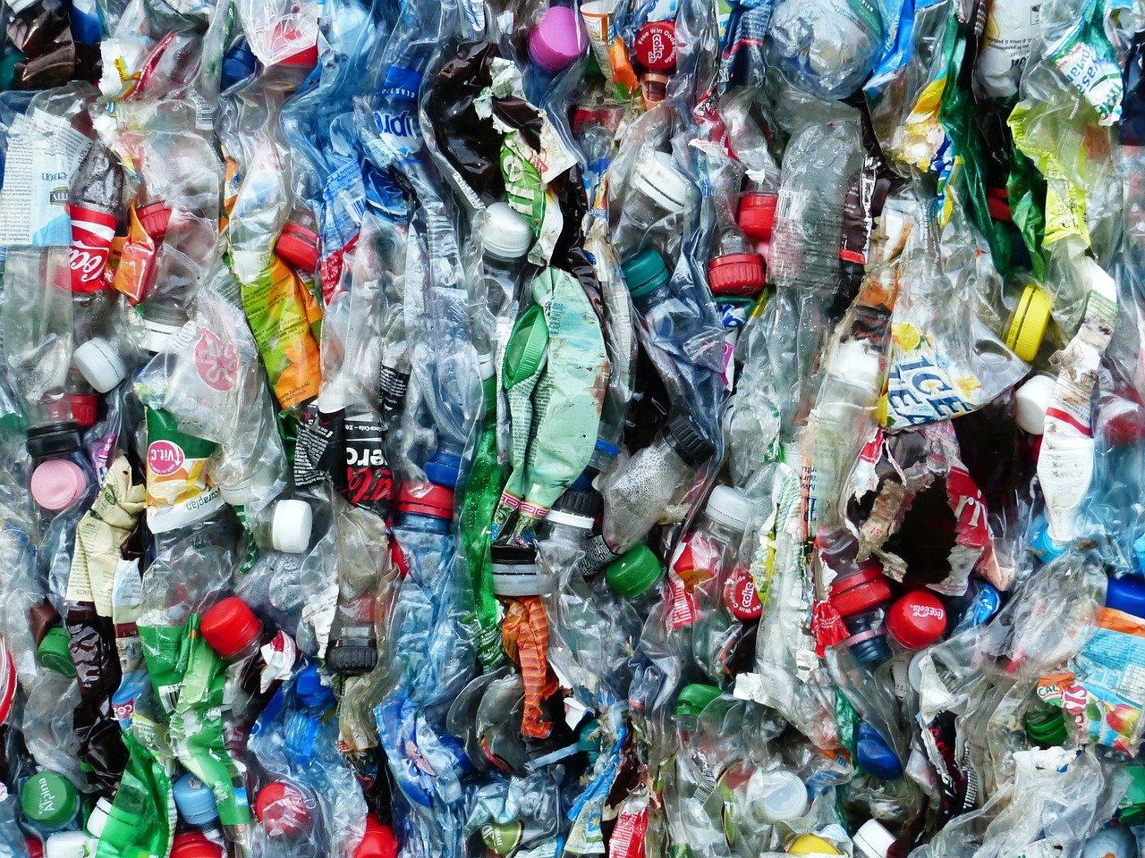Image post Enseña a tus hijos e hijas a vivir sin plásticos