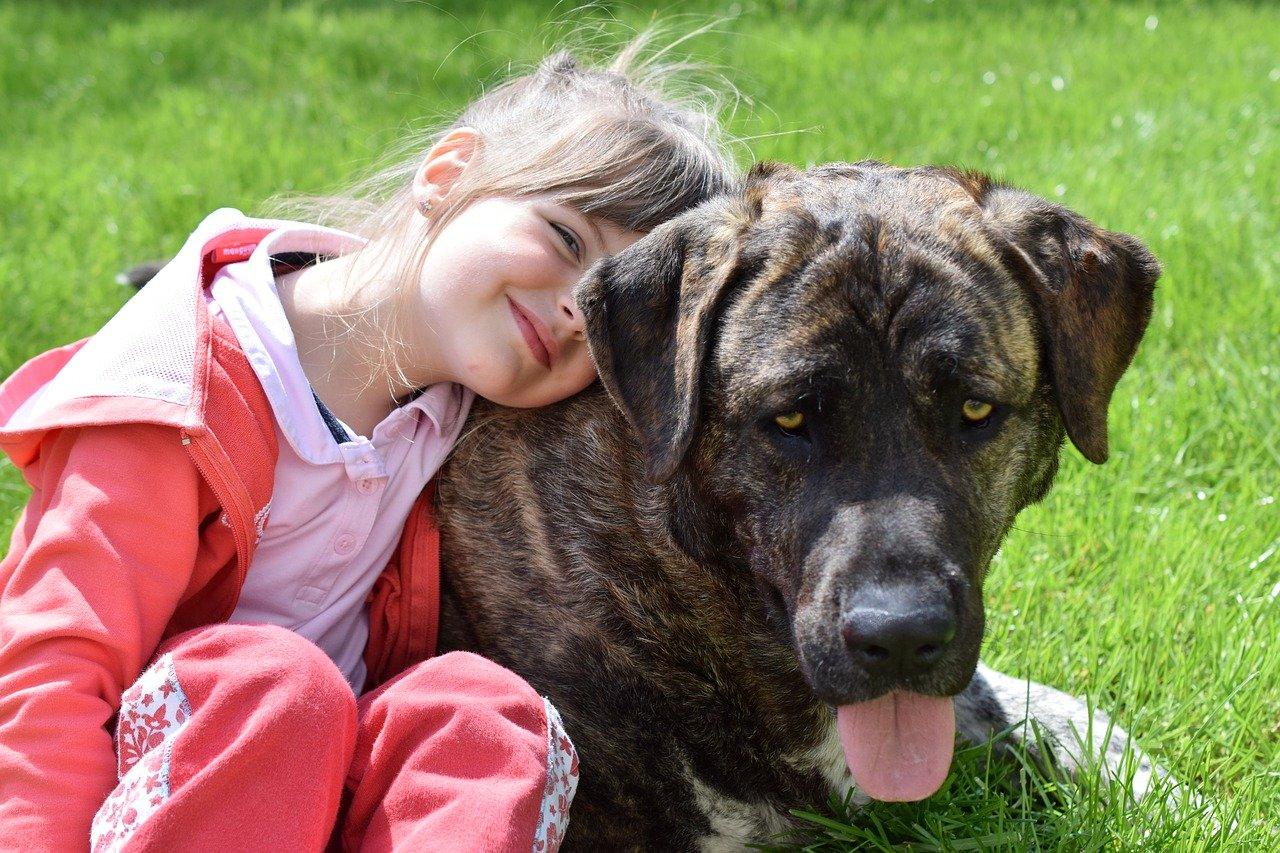Enseña a tus hijas e hijos a cuidar de su mascota