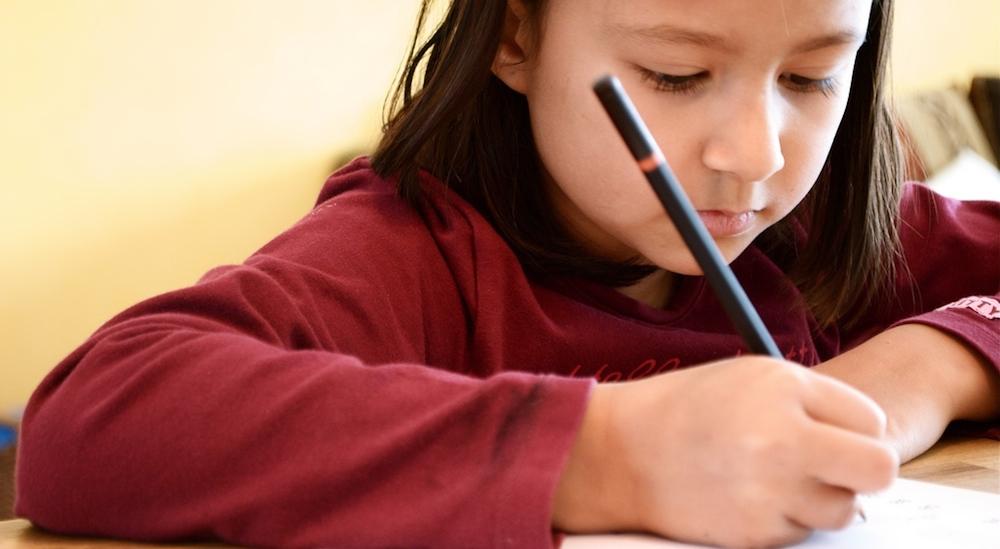 Image post La importancia de hacer los deberes