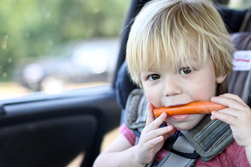 Foto de la entrada:La importancia de la alimentación durante la primera infancia