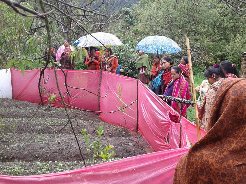 Guatemala-mujeres-campesinas01.jpg