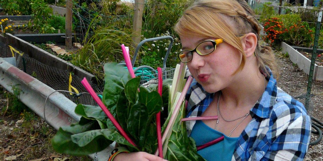 Foto de la entrada:Acelga, rica y nutritiva. ¡A comer acelga!