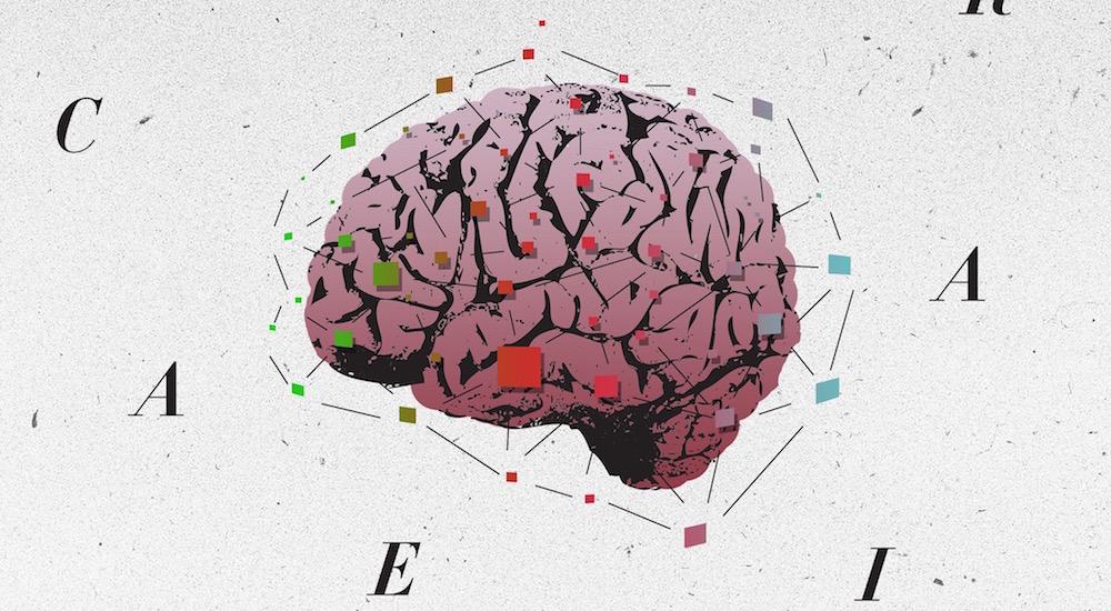 Foto de la entrada:MindUP, descubriendo cómo funciona el cerebro