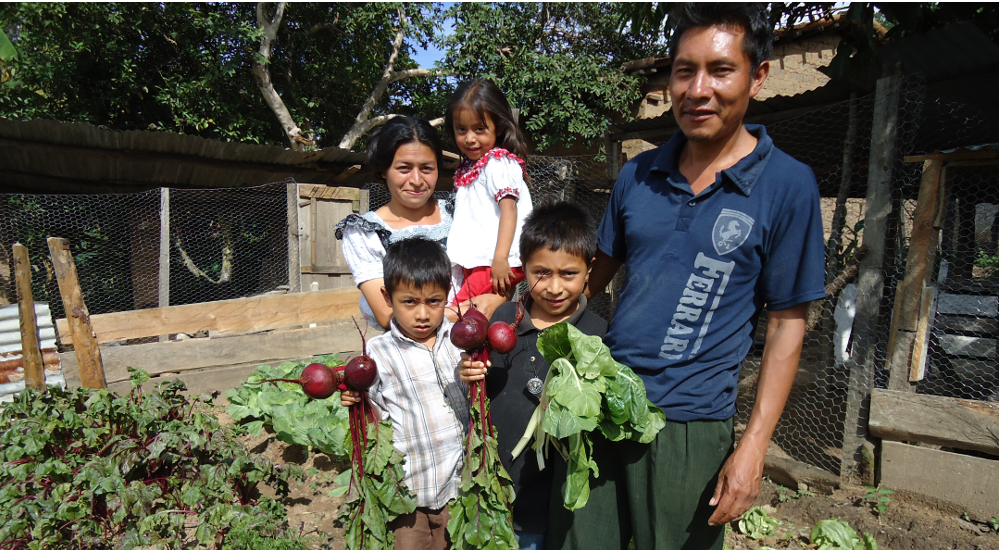 Foto Luchamos contra la desnutrición infantil en el Quiché