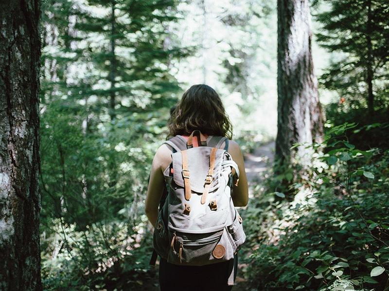 Foto de la entrada:¿Qué es el ecoturismo?