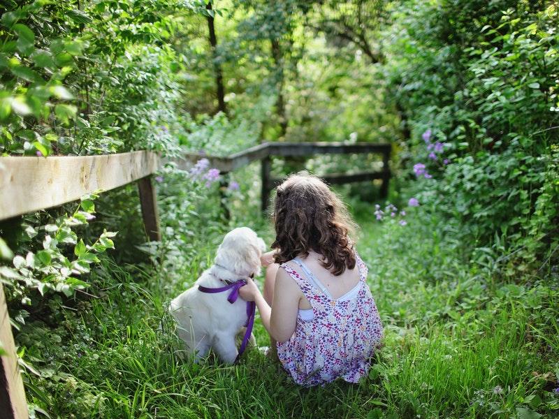 Cómo sensibilizar a los niños y niñas sobre la adopción de animales