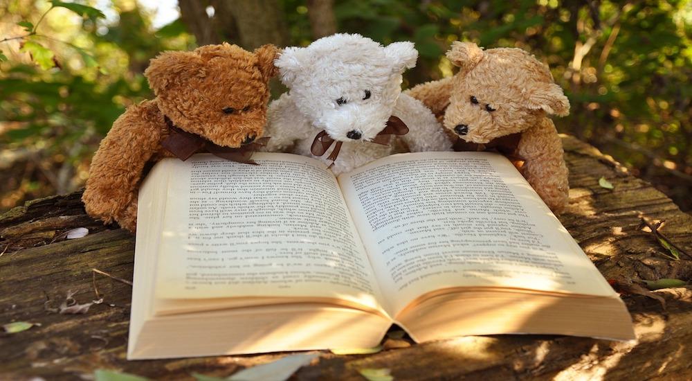 Foto de la entrada:El privilegio de la lectura en la era de la imagen