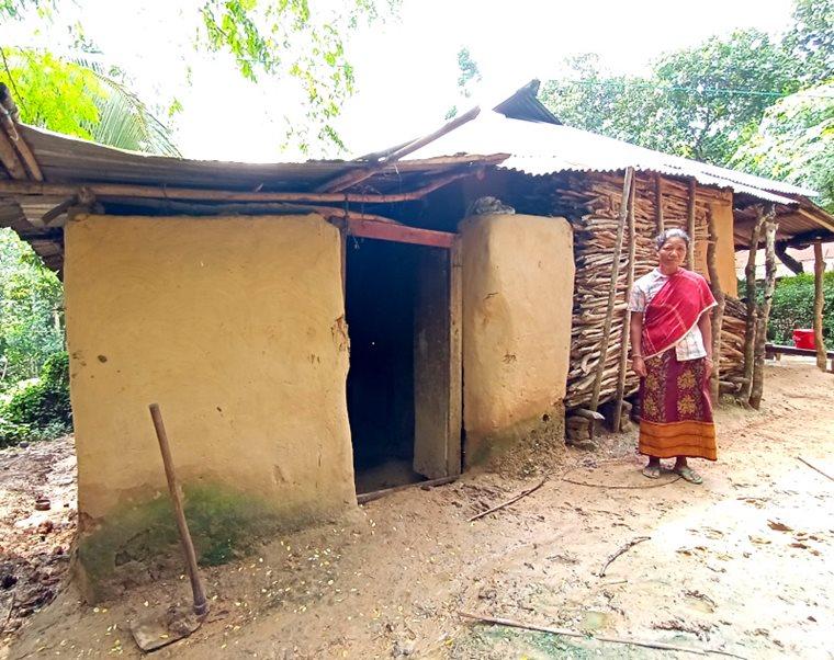 Convivir con el coronavirus en una plantación de té de Bangladesh