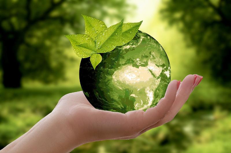 Foto 7 actividades de reciclaje para niños y niñas