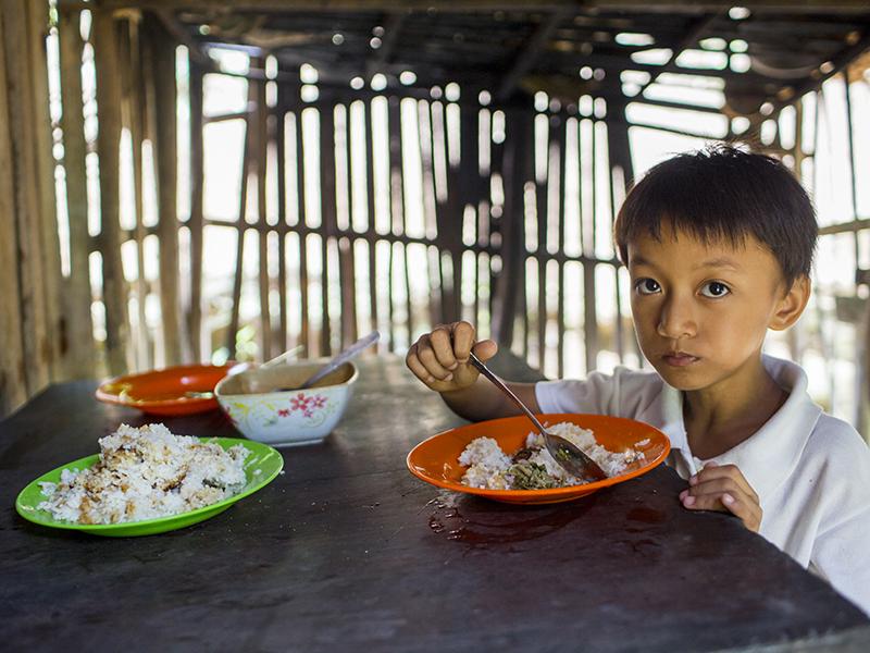Foto de la entrada:¿Qué es la seguridad alimentaria y por qué es importante?