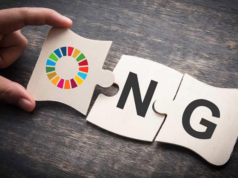 Image post El papel de las ONGs en el cumplimiento de los Objetivos de Desarrollo Sostenible