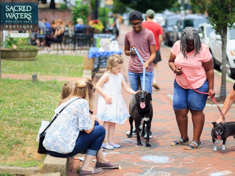 people-walking-the-dog-2414845.jpg