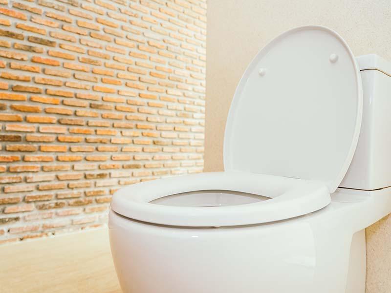 Foto Día Mundial del Retrete ¿Por qué se celebra y qué importancia tiene el saneamiento?