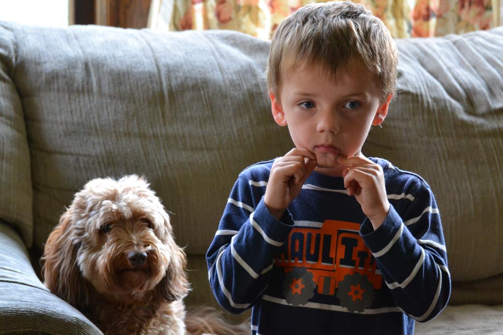 ¿A qué edad es buena dejar a los niños solos en casa?