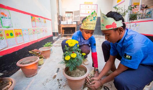niños en escuela cuidando planta